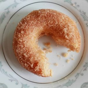 A donut covered in cinnamon sugar on a white and light blue plate.