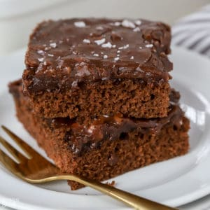 Two slices of chocolate cake on a white plate.