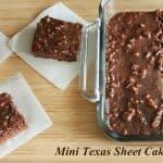 Mini Texas Sheet Cake