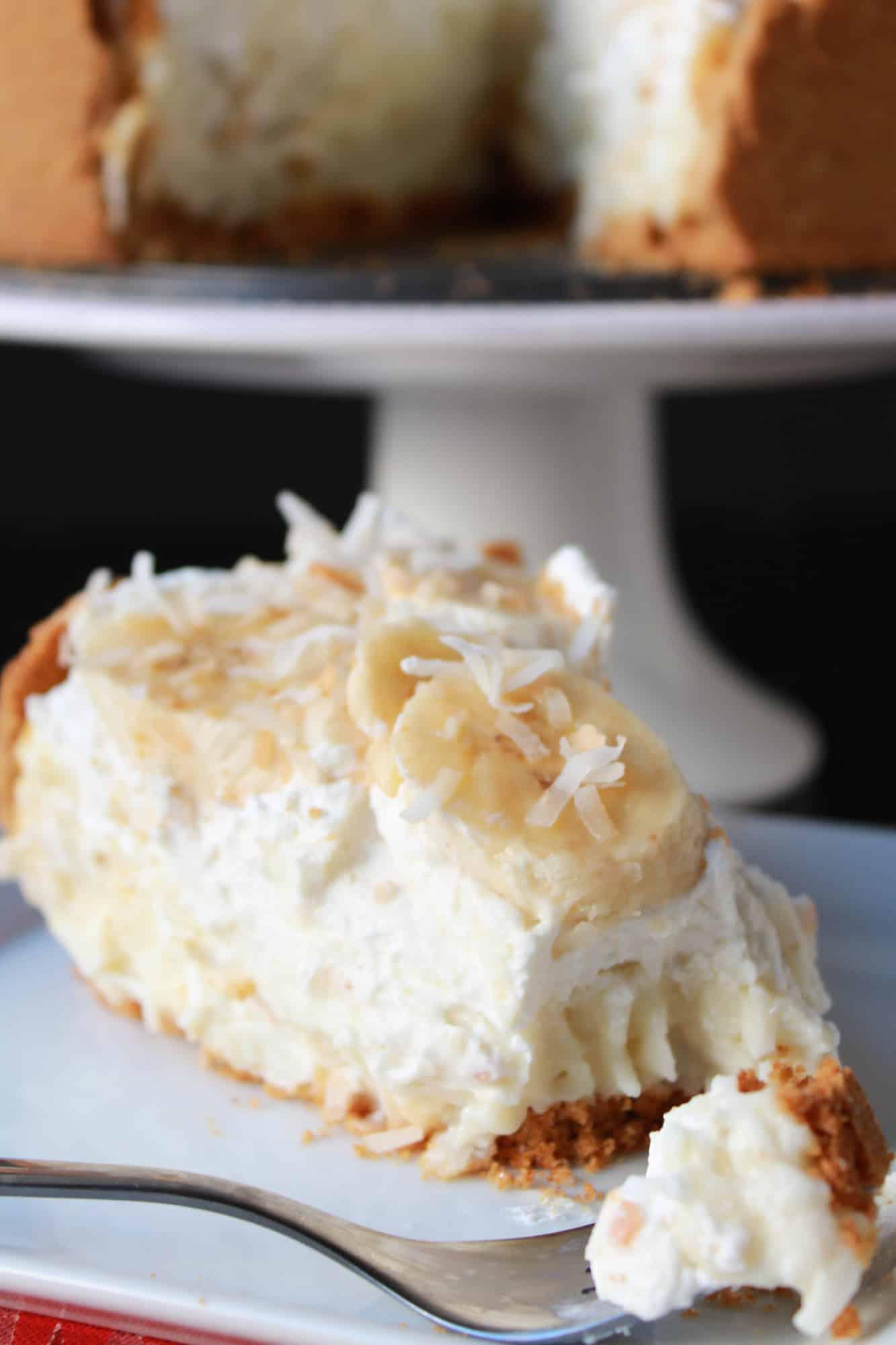 Cream pie 3