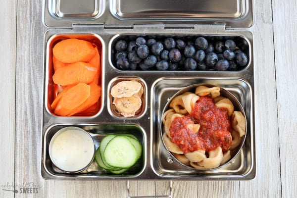 Lunchbox with tortellini pasta, cucumbers, carrots and blueberries.