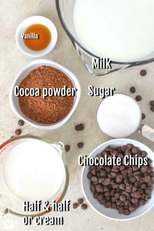Ingredient for crock pot hot chocolate. Milk, cocoa, sugar, chocolate chips, vanilla.