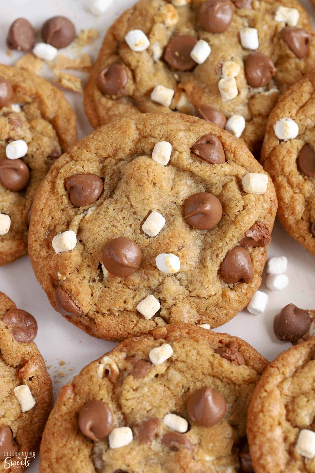 Closeup of s'mores cookies topped with mini marshmallows and chocolate chips.