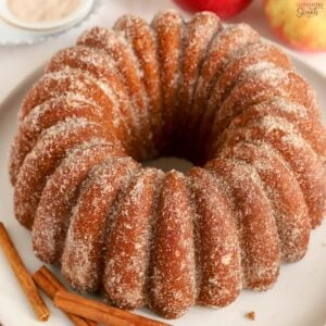 Apple Cider Donut Cake covered in cinnamon sugar on a round white plate.